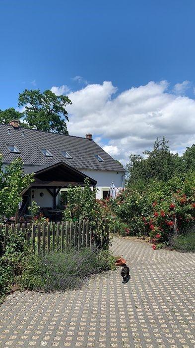 Bauernhaus in Dorflage von Schloin mit  Obstgarten